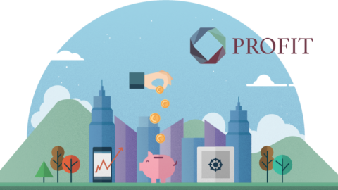 2nd PROFIT newsletter now available