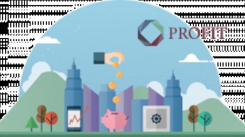 1st PROFIT newsletter