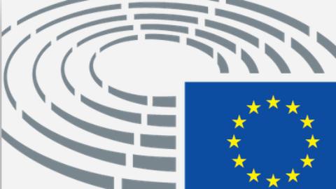 Digital Social Innovation in the European Parliament